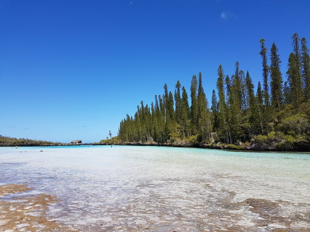 Piscine naturelle ile des pins new caledonia top tips for Piscine naturelle