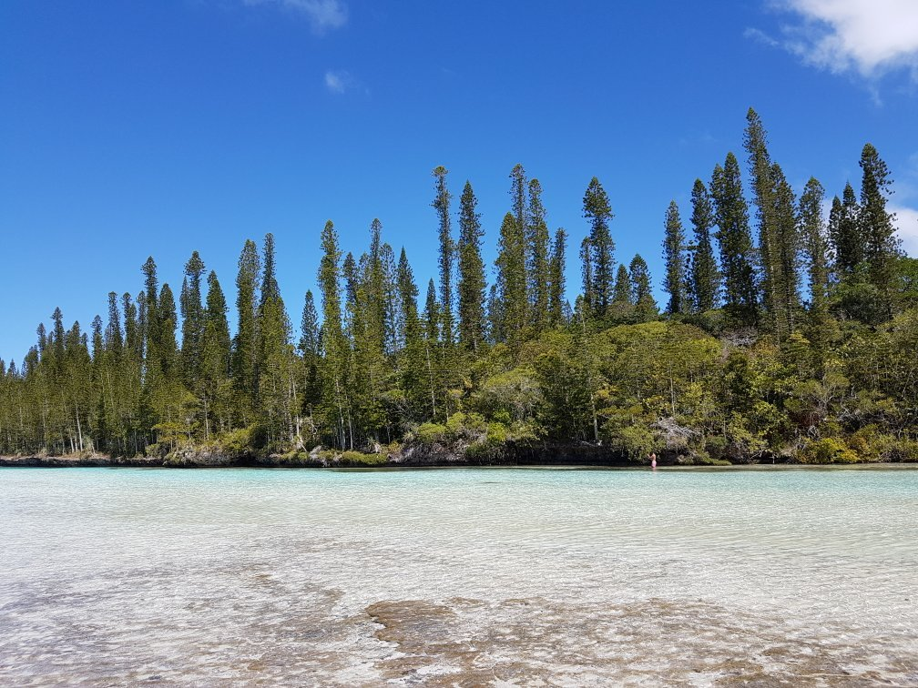 Piscine naturelle ile des pins new caledonia top tips for Piscine naturel