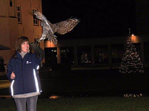 Berkel en Rodereis Birds@work