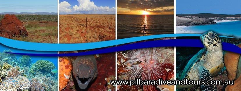‪Pilbara Dive and Tours‬