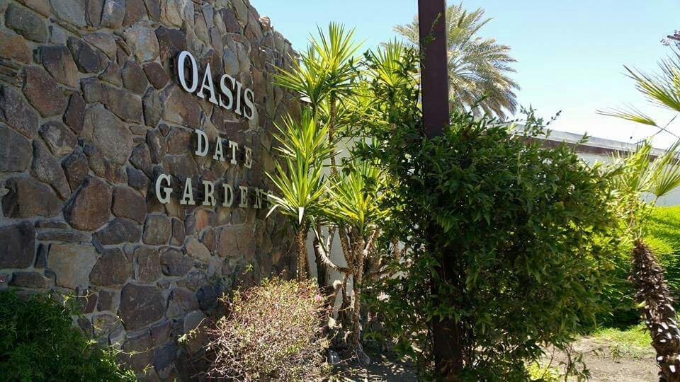 Oasis Date Gardens Thermal 2017 Ce Qu 39 Il Faut Savoir