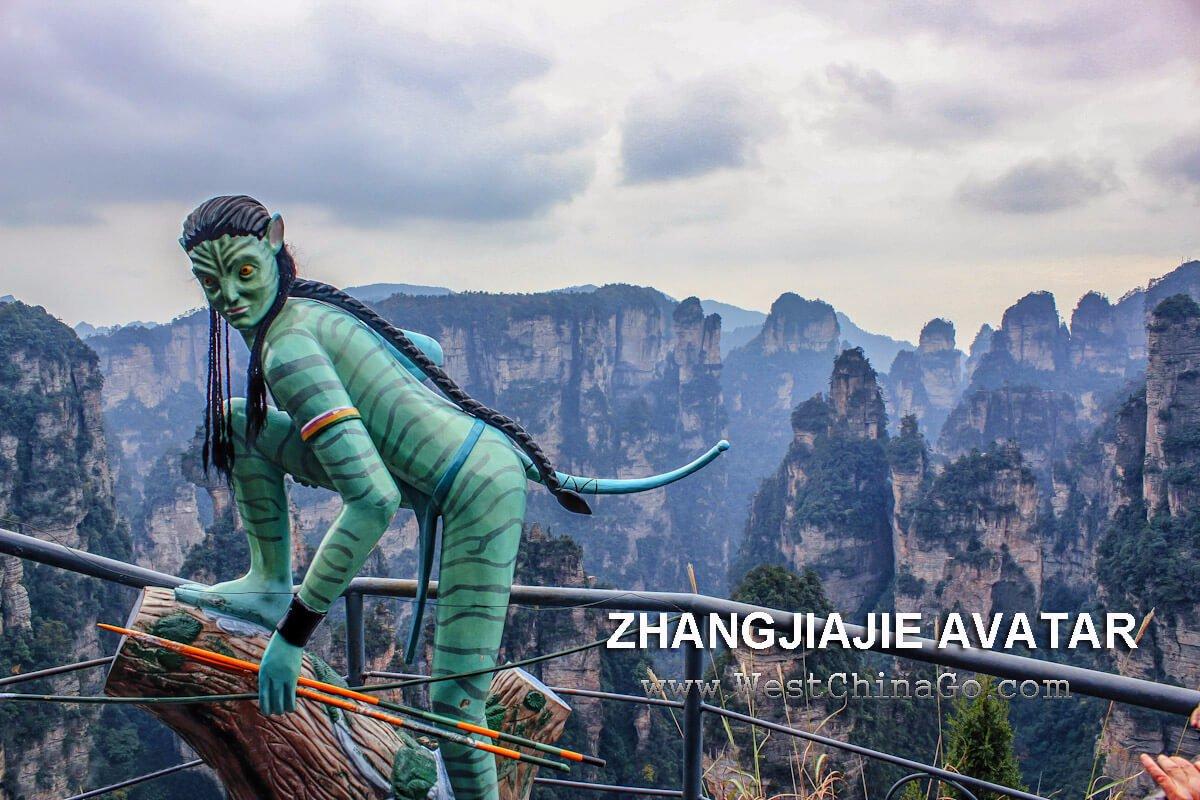 zhangjiajie avatar