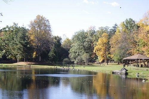 Depew Park