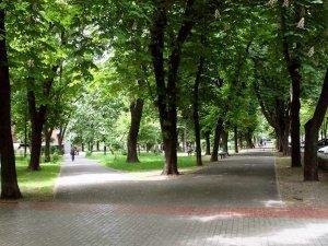 Paulov Garden