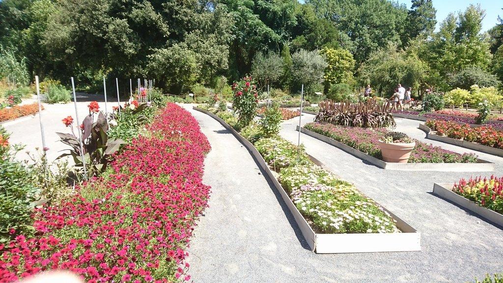 Parc de la tete d 39 or lione aggiornato 2017 tutto for Jardin 93