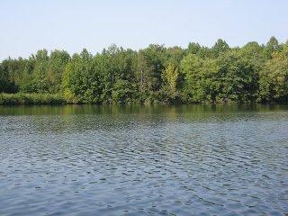 Lake Michael Park
