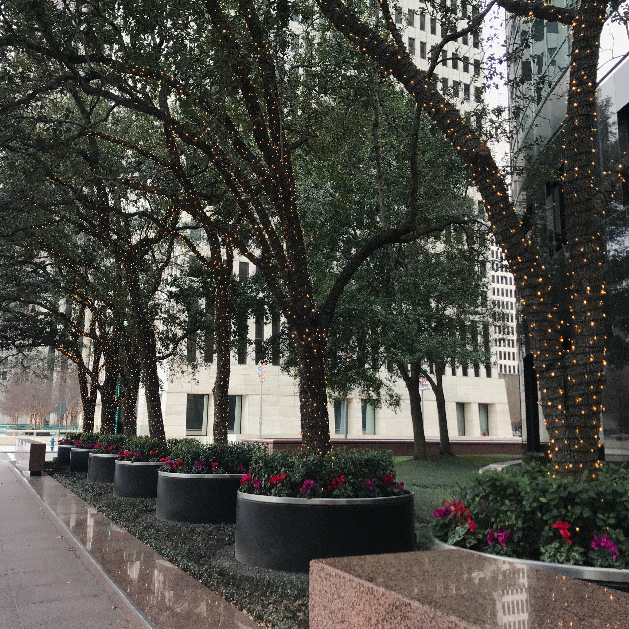 Beautiful Houston
