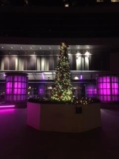 Intercontinental Boston 2018 Prices Hotel Reviews Ma Tripadvisor