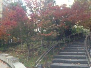 Awaji Park