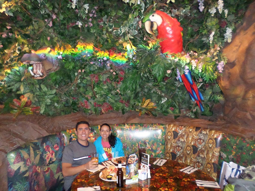 Rainforest Cafe Grapevine Hours