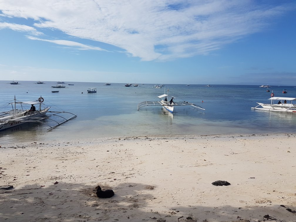 Dumaluan Beach Resort Map%0A Alona Beach        Reviews