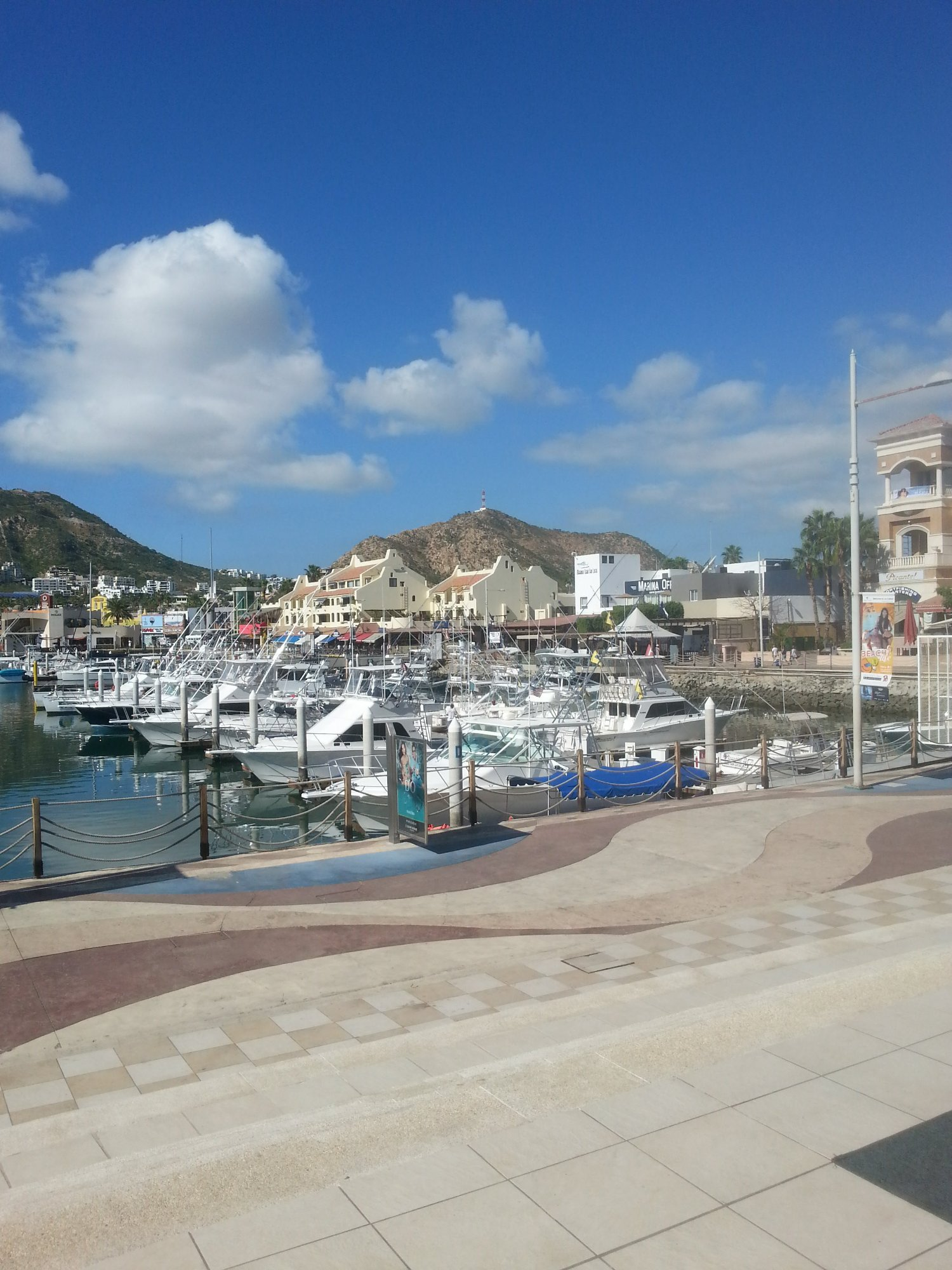 along the marina in cabo there are many attraction of food and drink