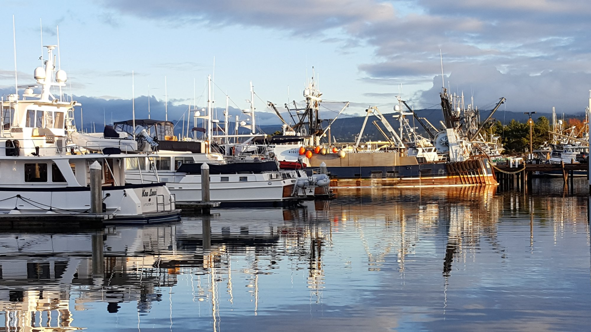 Bellingham Harbor