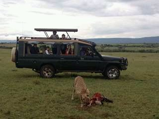 Mara Triangle Safaris