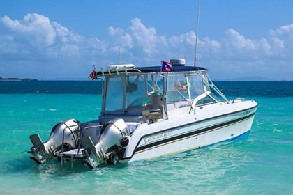 Power Cat Charters