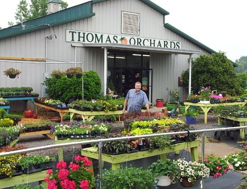 Thomas Orchards Greenhouse & Giftshop