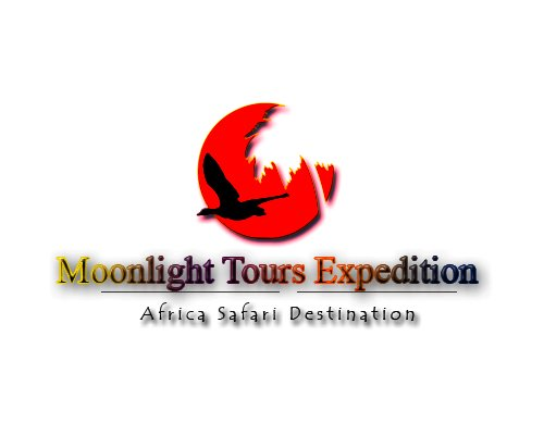 Moonlight Tours Expedition