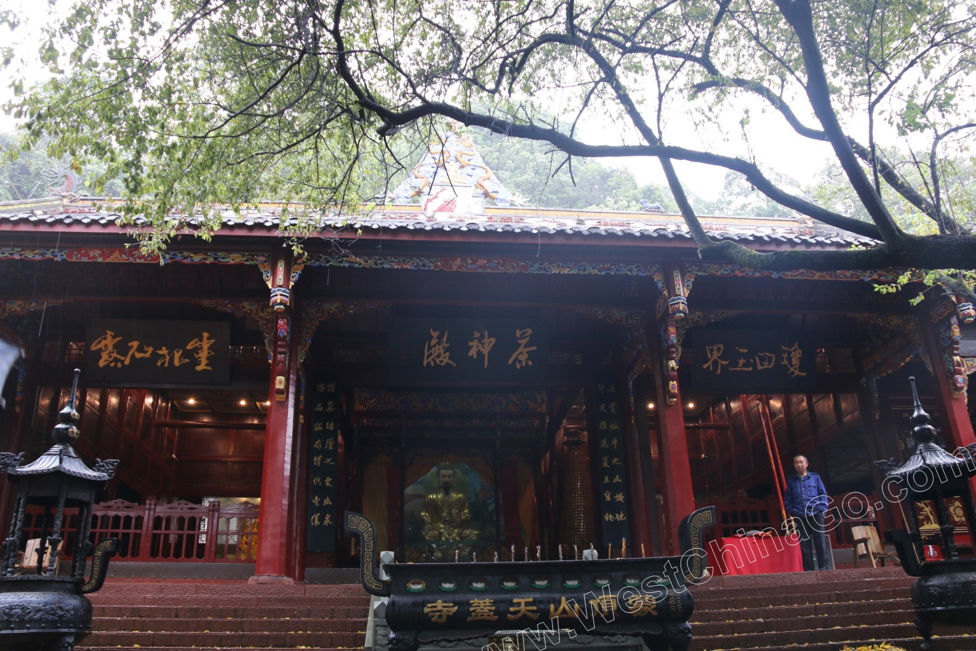 SiChuan YaAn Mengding Mountain Tour From ChengDu