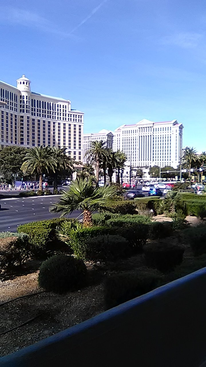 Bellagio and Ceasers Palace