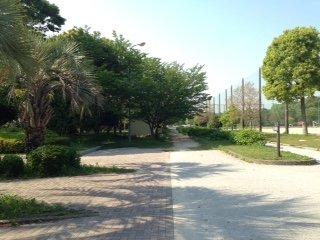 向島運動公園