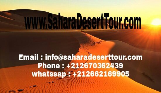 ‪Sahara Desert Tour - Day Tours‬