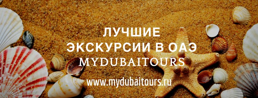 My Dubai Tours