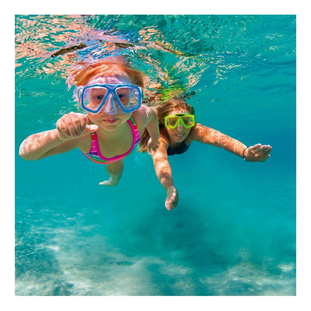 Buceso o Snorkel! Conocé el mundo debajo del mar!