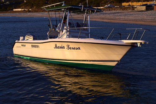 Los Barriles Fishing Charter