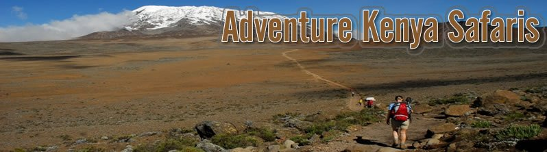 Adventure Kenya Safaris