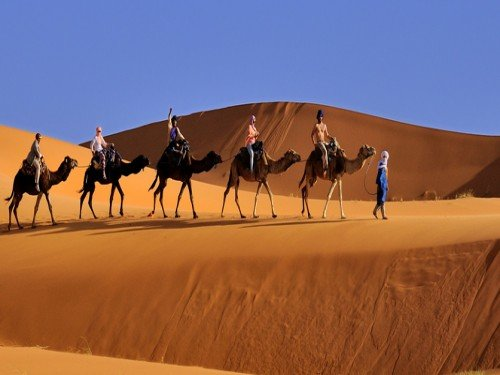 Wonderful Desert Tours