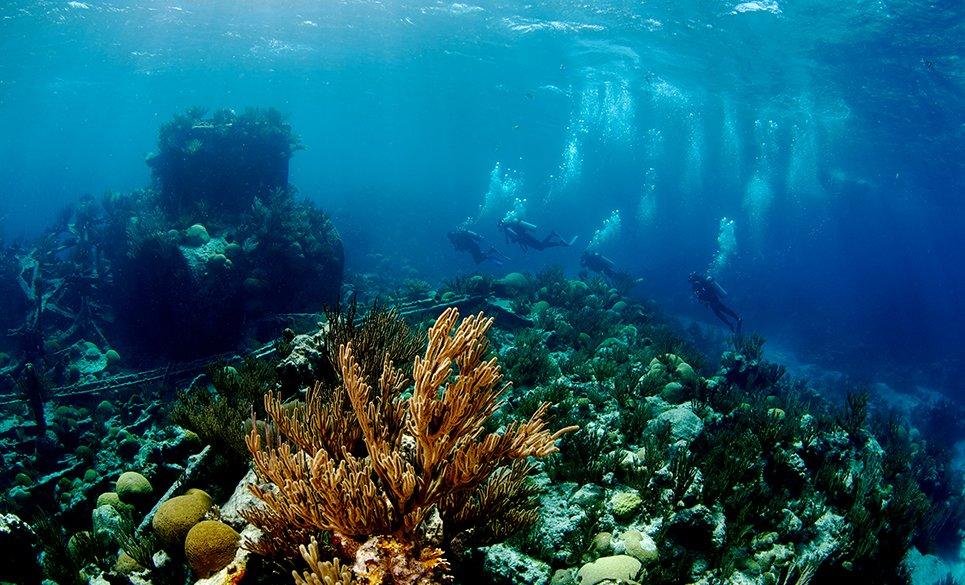 Constellation Ship Wreck, Bermuda