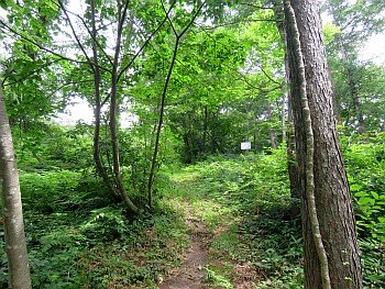 The Site of Todonojimba