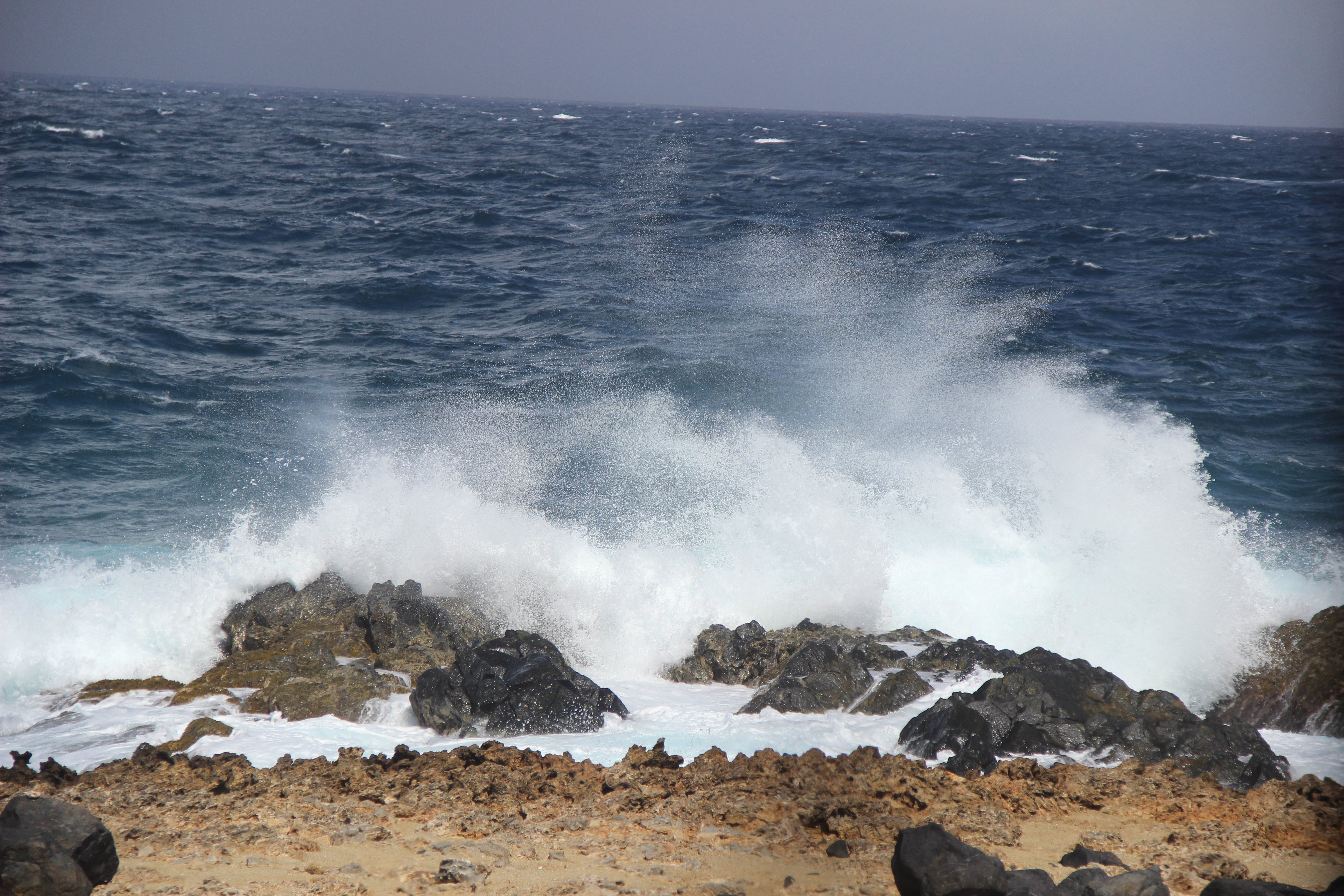 The awesome looking Aruba coast