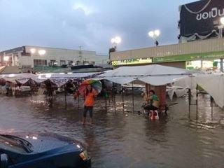 Saveone Night Market