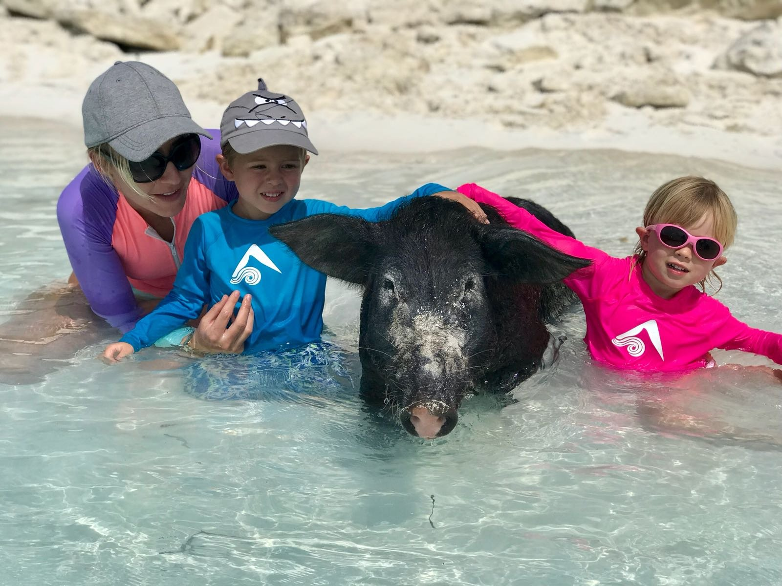 Swimming with the pigs, Exumas