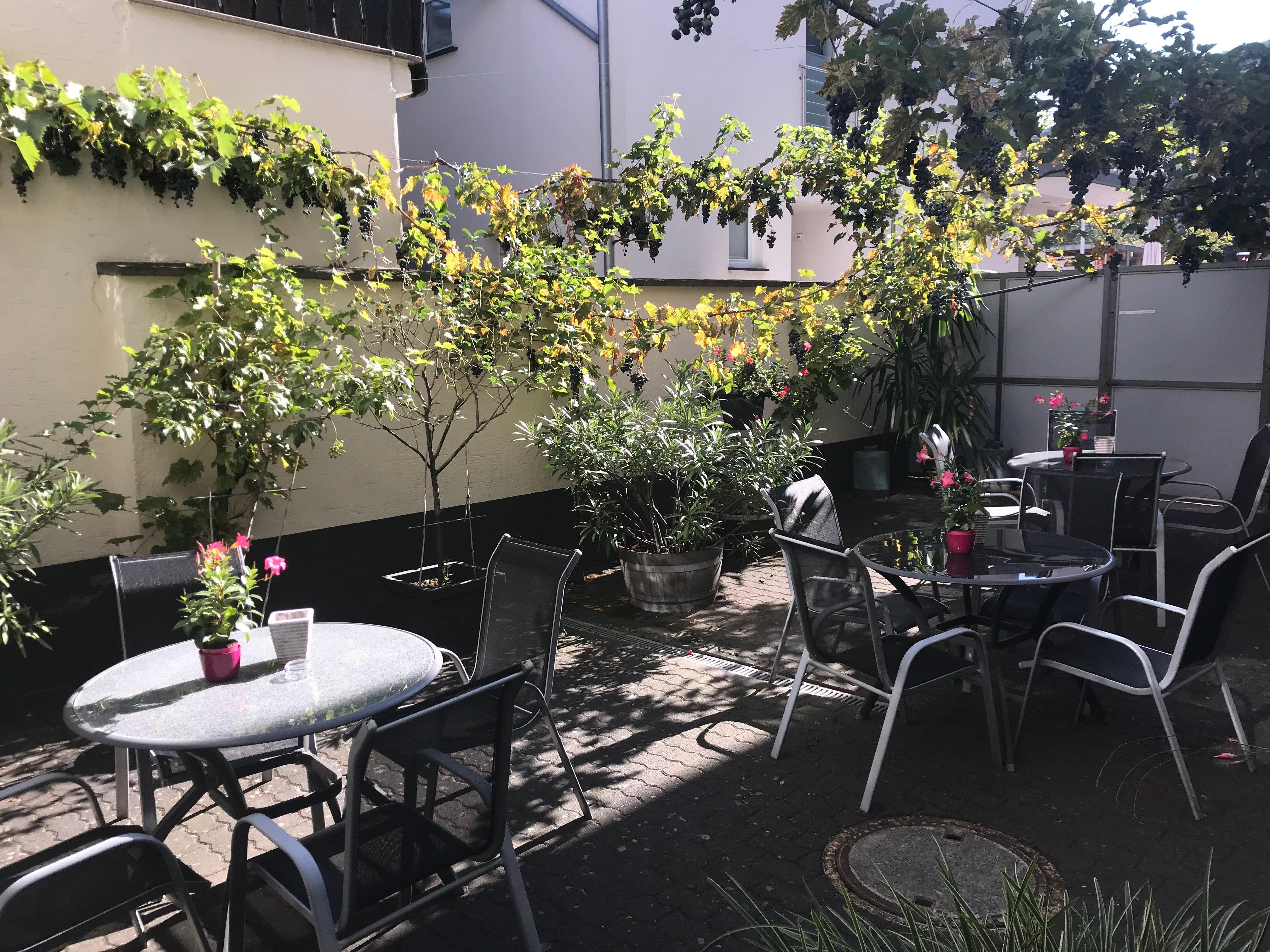 Winzer Lounge Gastezimmer