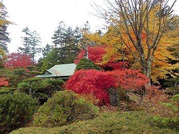 Azuma Garden