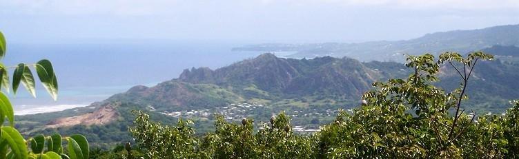 Barbados Travel & Tours
