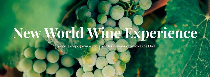 Wineroutechile