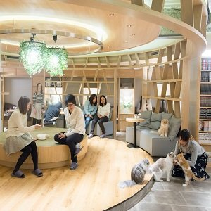Cat Cafe Mocha Lounge Shinjuku