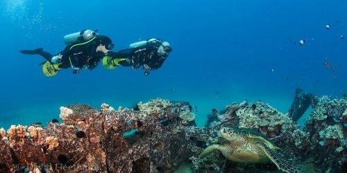 Dive Wailea