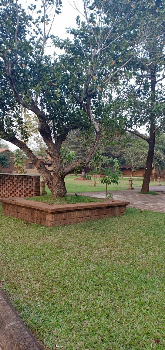 Kala Bhumi- a well designed , deeply conceptual , well maintained to showcase the rich tradition, heritage and culture of Odisha.