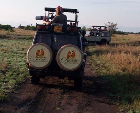 Ancient Africa Safaris