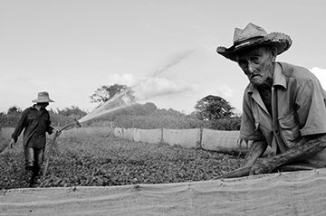 Photo Tours in Vinales with Guillermo Seijo