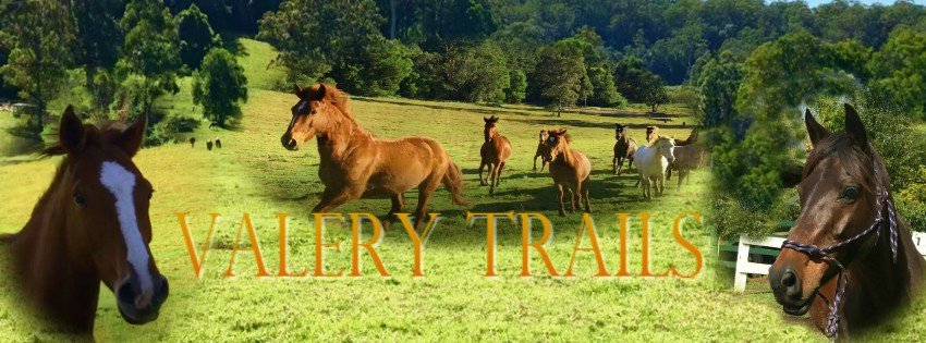 Valery Trails & Horse Riding Centre