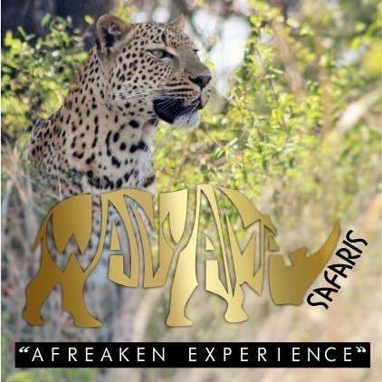 Wanyama Safaris