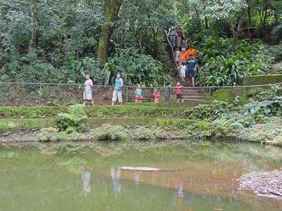 Parque do Jacaranda