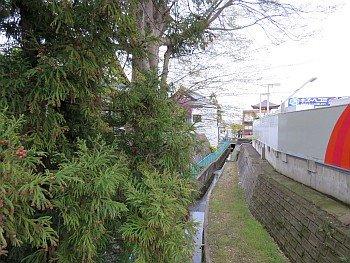 Kuriyagawa Fence Remains