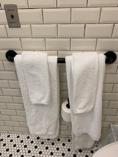 Towel rack was oddly placed right over the toilet paper, which meant soggy toilet paper every time I re-hung a wet towel. Hook on the door would have been great!