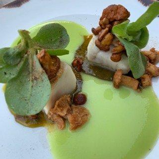 main Zahnder aus dem Lago Maggiore poschiert, Pfifferlinge, grüne Tomate und Portulak